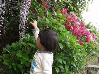 huji2008_1.jpg